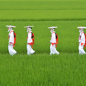 Win a Prize<br>[Season of Green Paddy Rice Fields] INOUE Satoru
